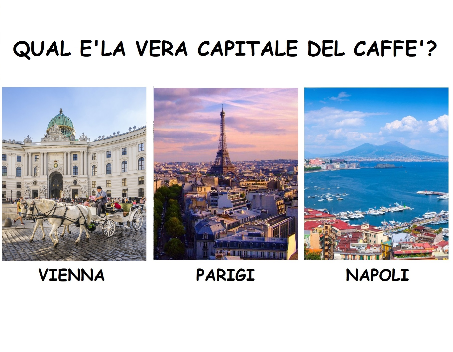 What is the true capital of coffee? Paris, Vienna or Naples: who's the record?